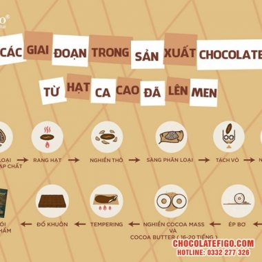 Quy trình sản xuất Chocolate từ Hạt cacao. Có thể bạn chưa biết ?